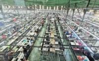 越南进口中国原料不足纺织品服装出口受挫