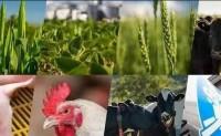"""第96届美国农业部农业展望论坛主题是""""创新•势在必行"""""""