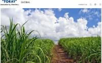 日本东丽首创100%基于植物原料的聚酯纤维