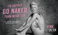 美国善待动物组织 PETA 将转移宣传重点