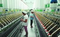 越南纺织聚落渐成形意外排挤台湾纱线厂
