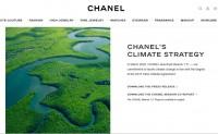 Chanel 发布正式文件,作出四大环保承诺