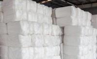 中国对美棉采购情况到底如何呢?