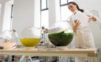 荷兰公司开发出一种基于植物打造的类塑料产品