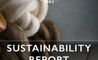 维达莱于发布2019年可持续发展报告
