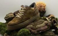 其他品牌推出纯素运动鞋系列