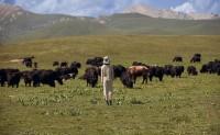 雅莹集团为中国天然珍稀动物纤维探索可持续发展道路