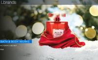 维密母公司 L Brands 假日季可比销售额增长5%