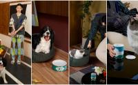 江南布衣旗下 JNBYHOME 联手宠物创业公司 pidan 推出首个宠物生活系列