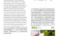 """央视评""""H&M抵制新疆棉花"""":只会换来中国消费者""""自卫"""""""