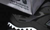 A BATHING APE x New Balance 2002R