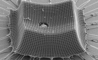 科学家打造性能优于凯夫拉的碳柱型超轻装甲材料