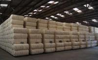 国储棉资源依旧为纺织企业采购主力