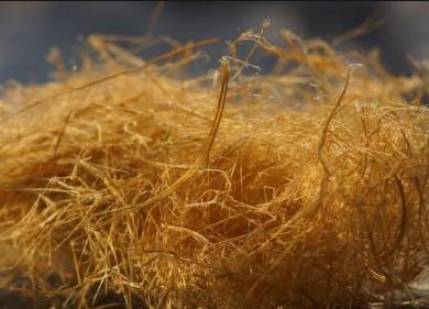 美国开发快速溶解植物纤维新工艺