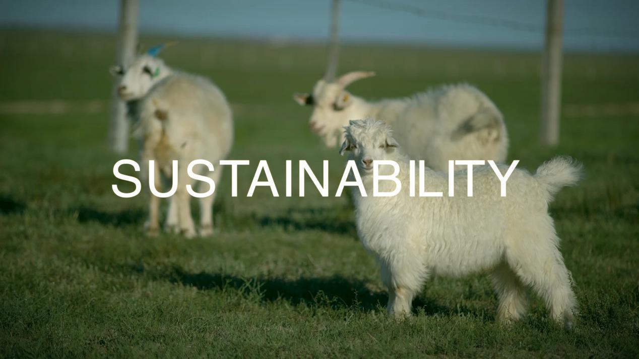 创造与坚持可持续时尚!UPW推出环保皮草
