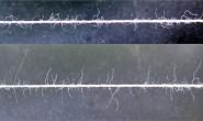 浅析纱线毛羽的主要影响因素
