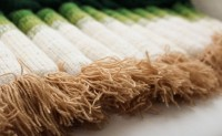 用羊毛和腈纶纱线编结出的农作物
