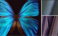 Teijin Fiber Japan使用结构颜色方法制作Morphotex织物