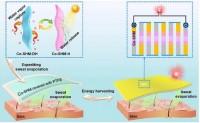 超强吸水薄膜利用汗水为动力