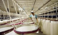 纺织市场综合分析