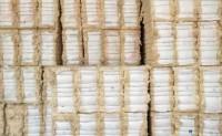 美棉需求良好周度数据保持积极势头