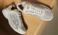 DIOR B30 老爹鞋