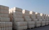印度纺企要求政府取消10%棉花进口关税
