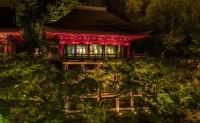 百岁生日的 GUCCI 在京都同时带来了 3 场展览