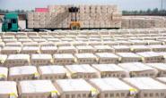 棉花连续大涨棉纺织厂现货采购不积极