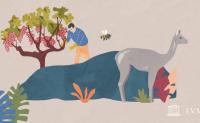 LVMH 和 Kering 先后宣布保护生物多样性的最新举措